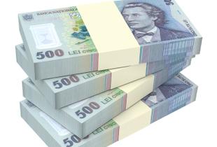 Încep plățile pentru Măsura 2. Bugetul de stat 2021, în Monitorul Oficial