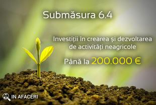 Submăsura 6.4 - Investiții în crearea și dezvoltarea de activități neagricole - până la 200.000 euro