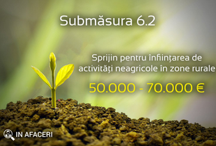 Submăsura 6.2 - Sprijin pentru înființarea de activități neagricole în zone rurale - până la 70000 euro