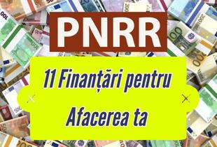 Planul National de Reziliență: 11 Finanțări pentru Firmele Romanești