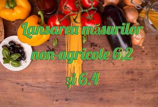 Lansarea măsurilor non-agricole 6.2 și 6.4