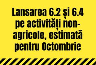 Lansarea celor două apeluri 6.2 și 6.4 pe activități non-agricole, estimată pentru luna octombrie
